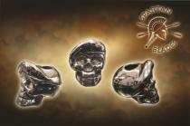 Spartan Blades - Beret Skull